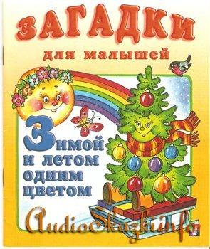 Детские книги: Загадки для малышей.Зимой и летом одним цветом.