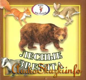 Детские книги: Лесные зверята