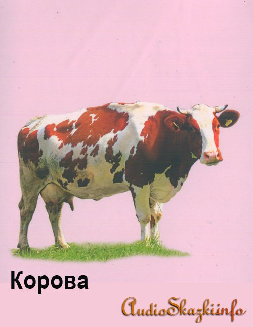 Развивающие картинки. Корова