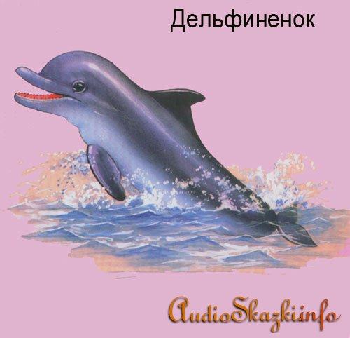 Развивающие картинки. Дельфин