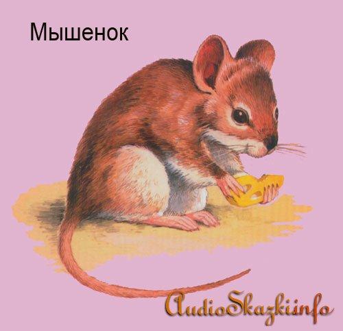 Развивающие картинки. Мышка