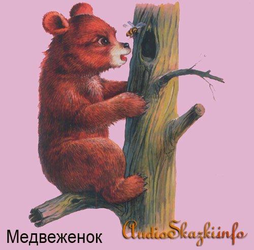 Развивающие картинки. Медведь