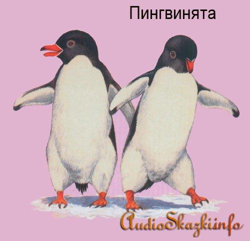 Развивающие картинки. Пингвины