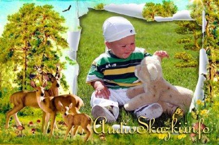 Детская фоторамка - Солнечный денек в лесу
