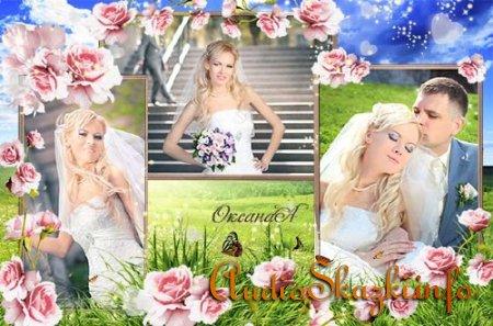 Красивая цветочная рамка -  Пробуждение весны
