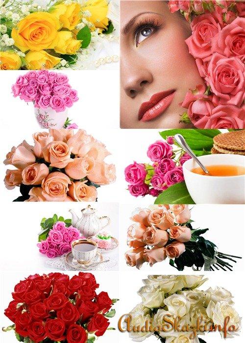 Клипарт растровый - Букеты роз