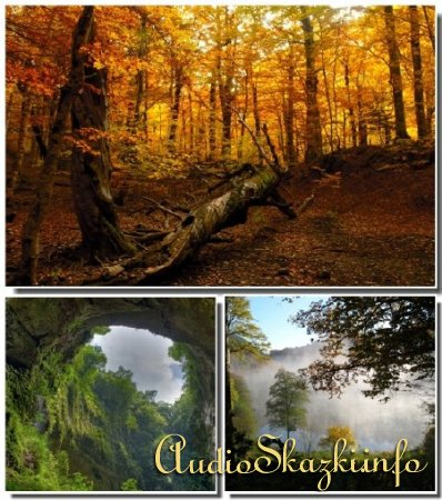 Завораживающие уголки природы со всего мира # 9