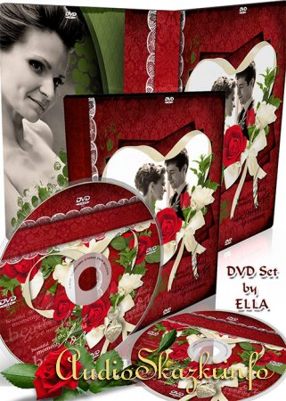 ������������� DVD �����-����� ��� �������� �������