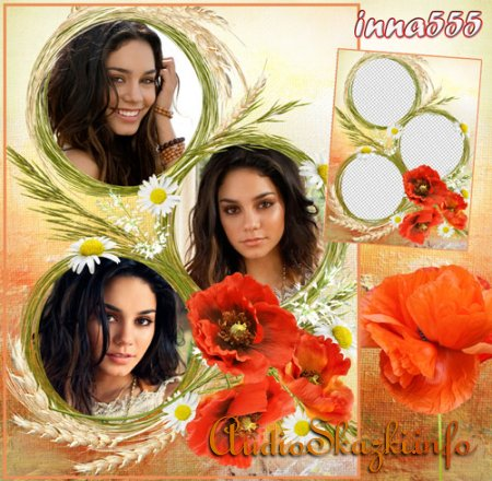 Цветочная рамка для трех фотографий - Красивые маки и колоски пшеницы