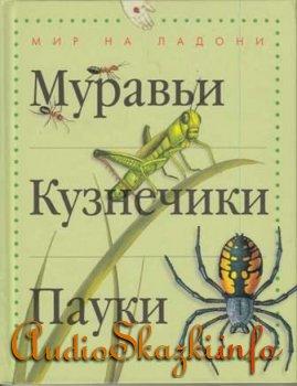 """Детские книги """"Муравьи, кузнечики, пауки"""""""
