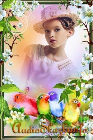 Детская рамка для photoshop - Красивые попугайчики