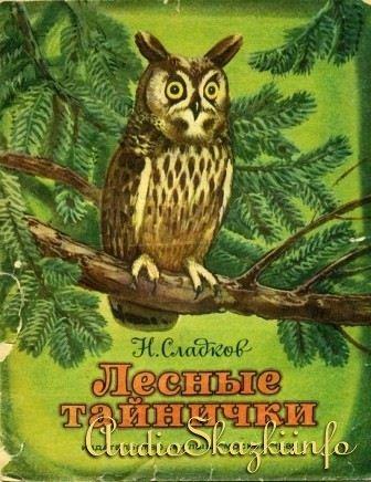 Лесные тайнички (аудиокнига)